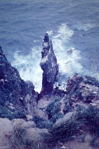 天売赤岩.JPG